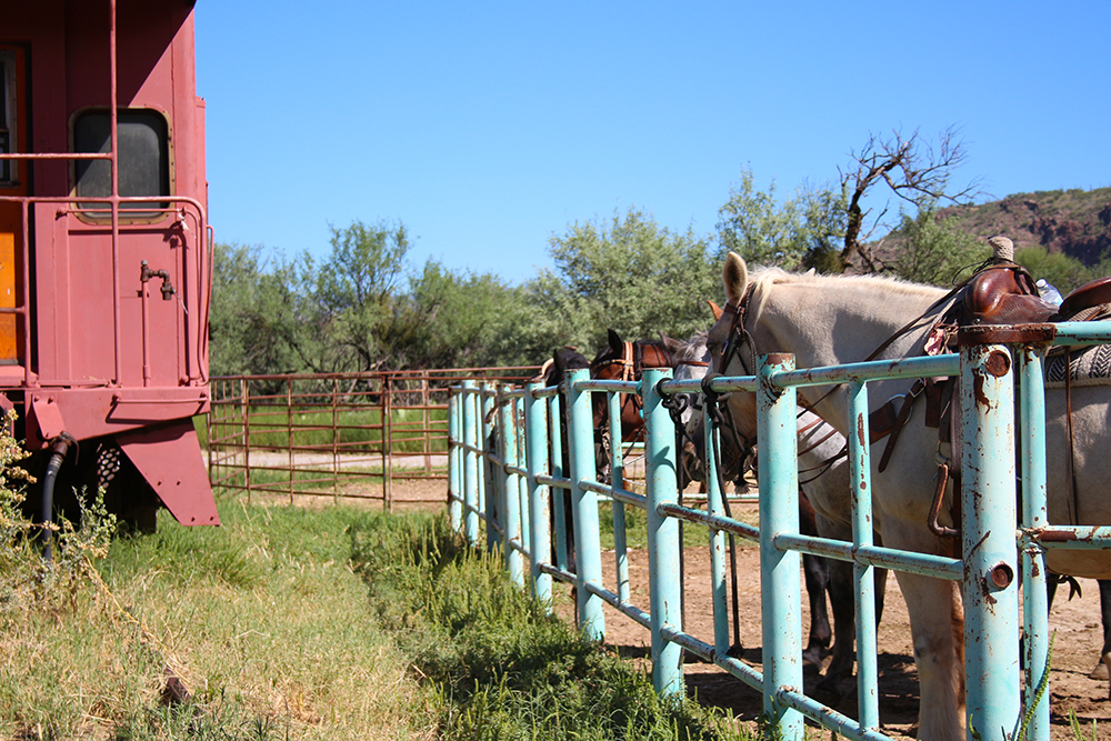 La Posta Quemada Located In Tuscon Arizona Horse Back Riding